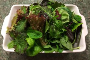 Grow Your Own Salads – All Year Round